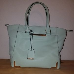 Call it Spring mint tote